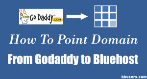 How To Point Domain From GoDaddy to Bluehost